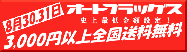 送料無料3000円